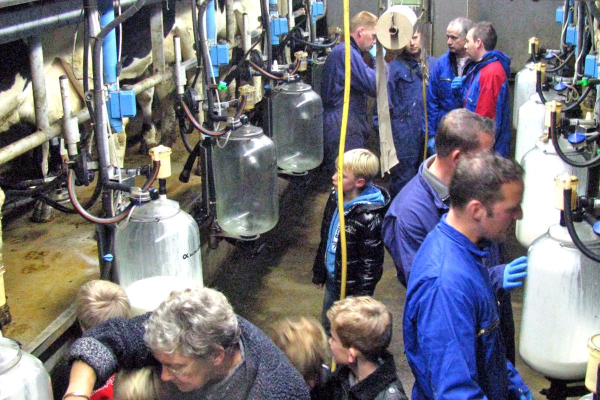 Boerderij Zuiderham - Excursies
