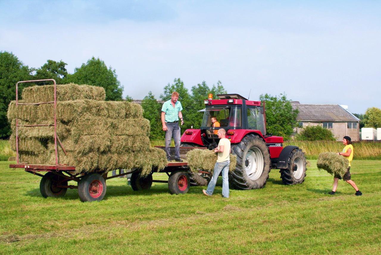 Boerderij Zuiderham Groningen, hooi binnen halen